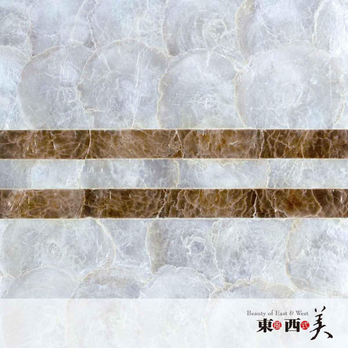 贝壳 装饰